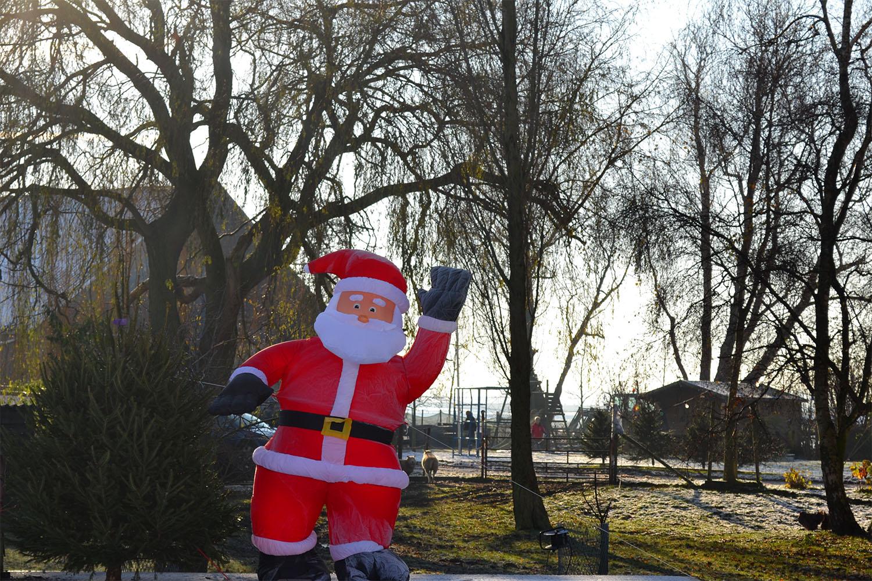 Nordmann Excellent kerstbomen Roelofarendsveen
