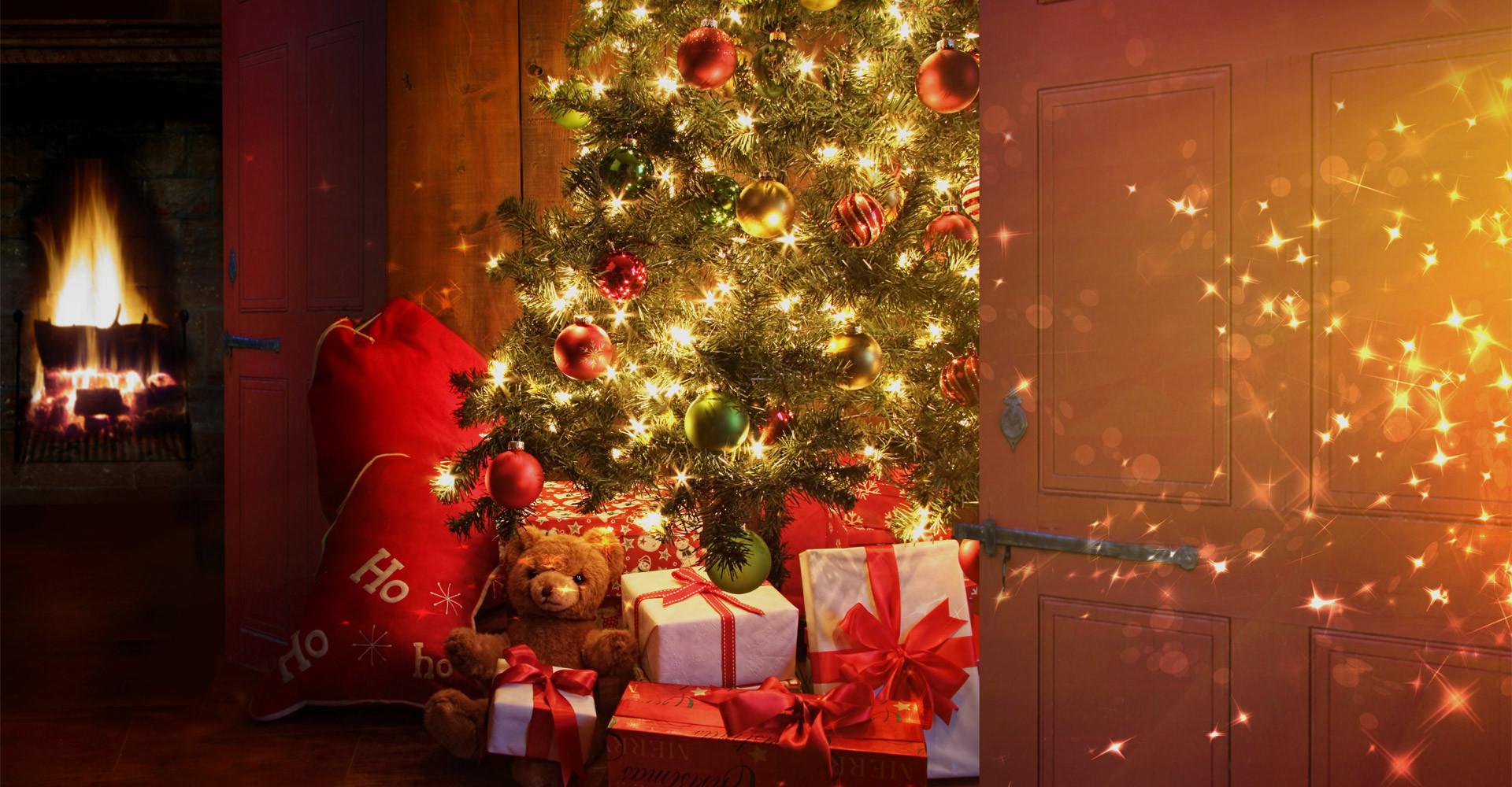 De mooiste Nordmann Excellent kerstbomen in Roelofarendsveen vanaf € 15,-