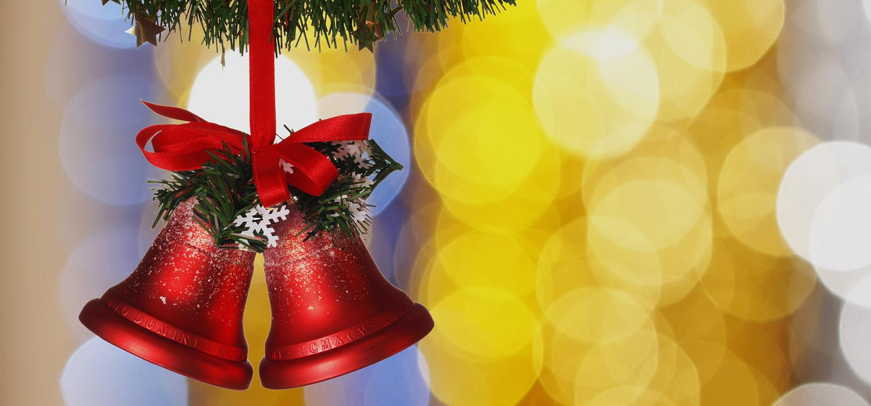 Veelgestelde vragen over Nordmann Excellent kerstbomen in Roelofarendsveen