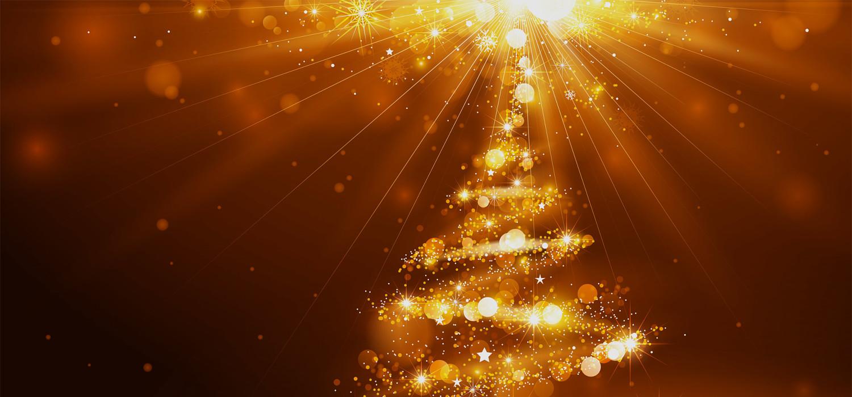Kerstbomen voor bedrijven in Roelofarendsveen